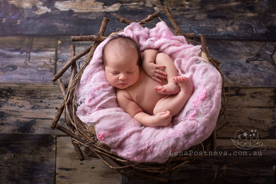 North Shore baby photographer - Sydney Northern Beaches Newborn Photography by Lena Postnova - 2 weeks old newborn baby girl sleeping in the nest