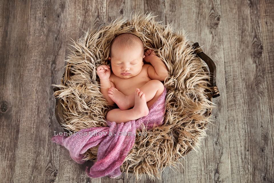 Baby Photography Sydney North Shore by Sydney Newborn Photographer Lena Postnova. Newborn Baby Girl 10 days old curled up sleeping in the basket