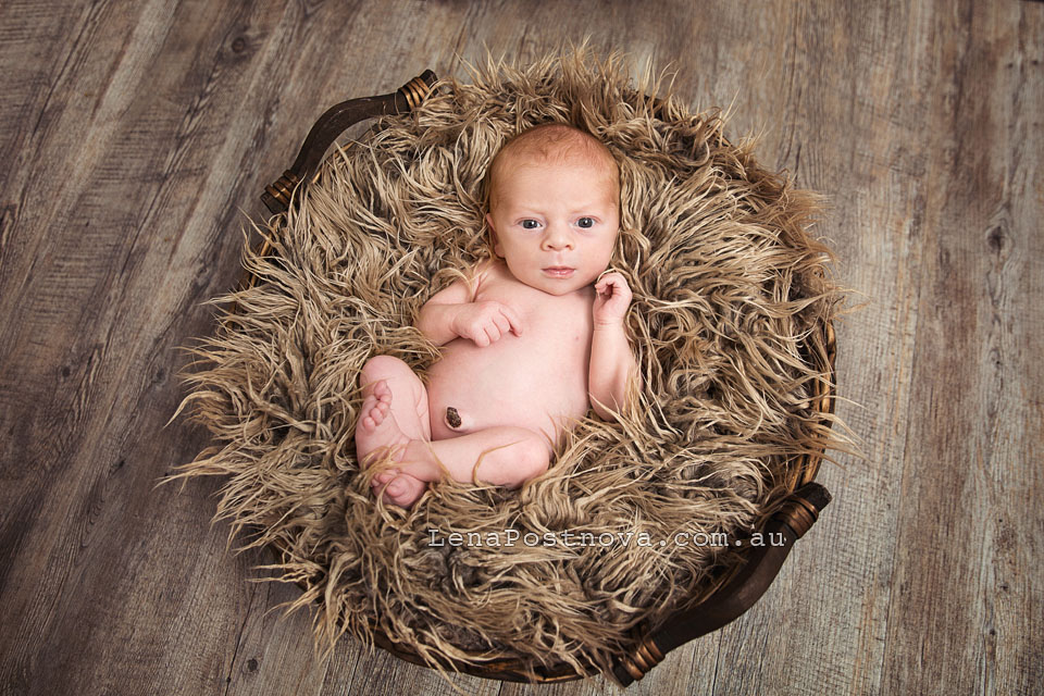 Baby Photography Northern Beaches Sydney Newborn_Photography_Sydney_Newborn_Photographer_Lena_Postnova_Baby Boy 12 days old awake in the basket