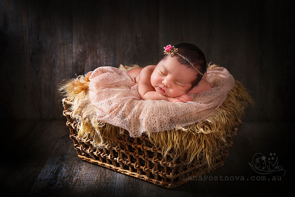 Baby Portrait Photographer Northern Beaches Sydney North Shore Newborn Photography Baby
