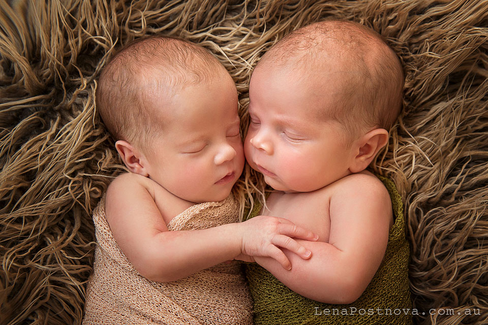 Twin Photography Sydney North Newborn_Photography_Sydney_Newborn_Photographer_Lena_Postnova_Newborn_Babies_Twins_Zara_Charlize_2weeks_old_16days_old_portrait of sleeping baby girls