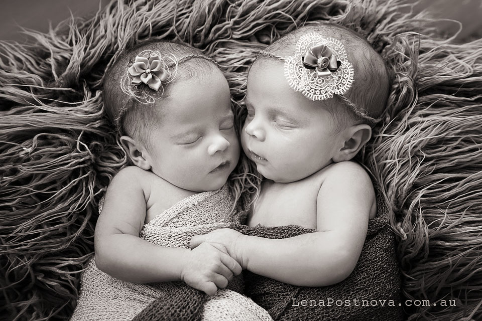 Twin Photography Sydney North Newborn_Photography_Sydney_Newborn_Photographer_Lena_Postnova_Newborn_Babies_Twins_Zara_Charlize_2weeks_old_16days_old_black and white portrait of gorgeous twins in the basket and wearing flower headbands