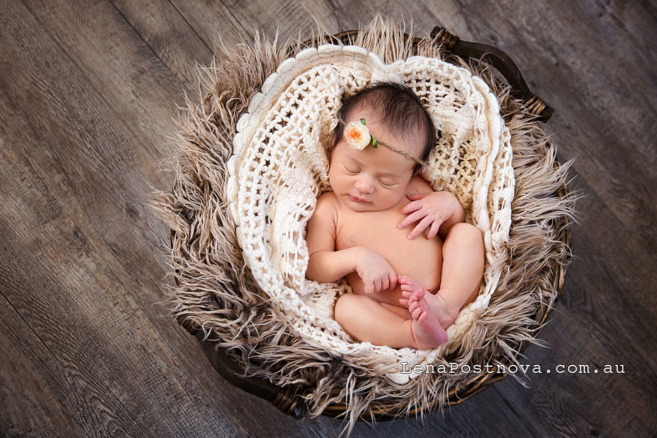 Lena postnova photography professional newborn photos